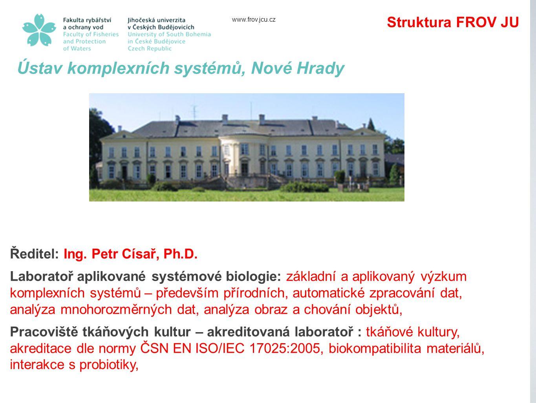 Ústav komplexních systémů, Nové Hrady