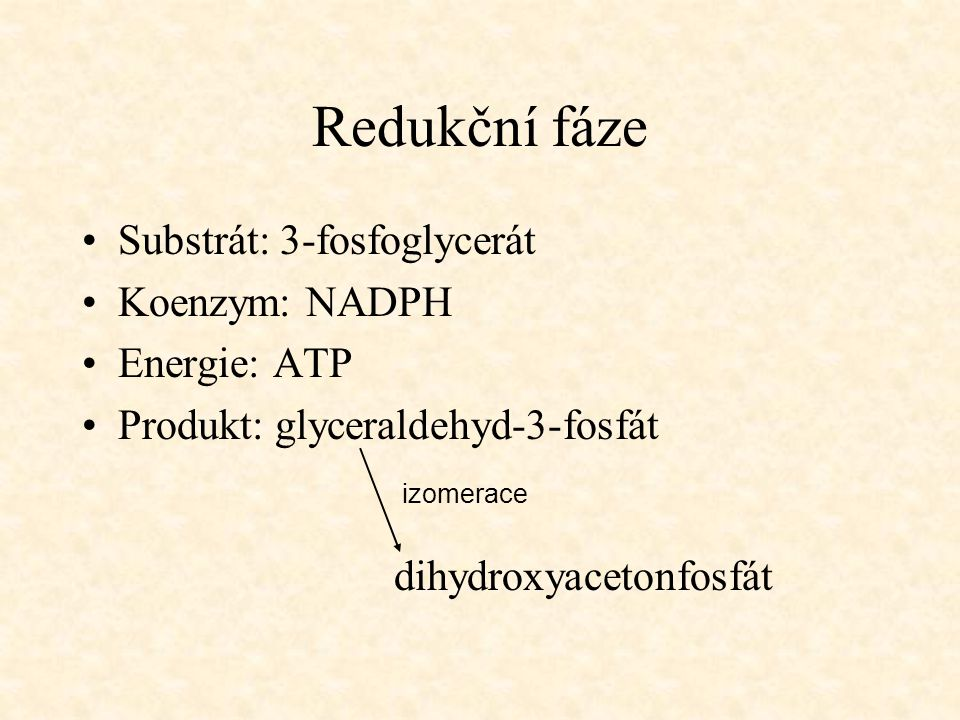 Redukční fáze Substrát: 3-fosfoglycerát Koenzym: NADPH Energie: ATP