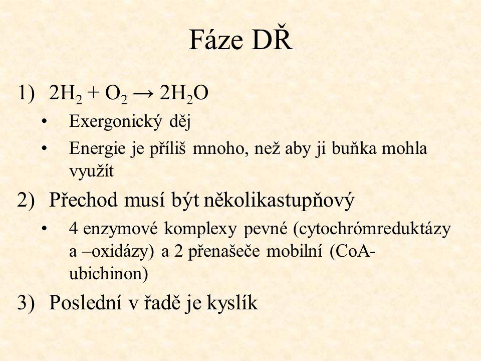 Fáze DŘ 2H2 + O2 → 2H2O Přechod musí být několikastupňový