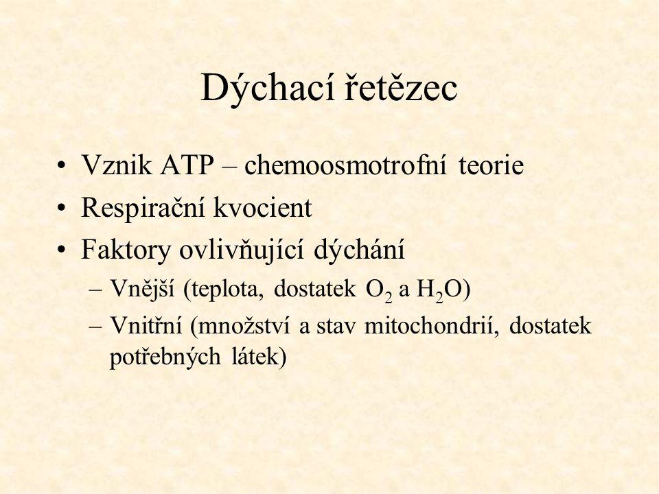 Dýchací řetězec Vznik ATP – chemoosmotrofní teorie Respirační kvocient