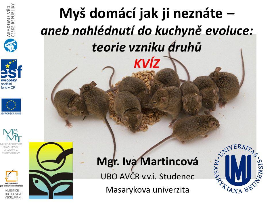 Mgr. Iva Martincová UBO AVČR v.v.i. Studenec Masarykova univerzita