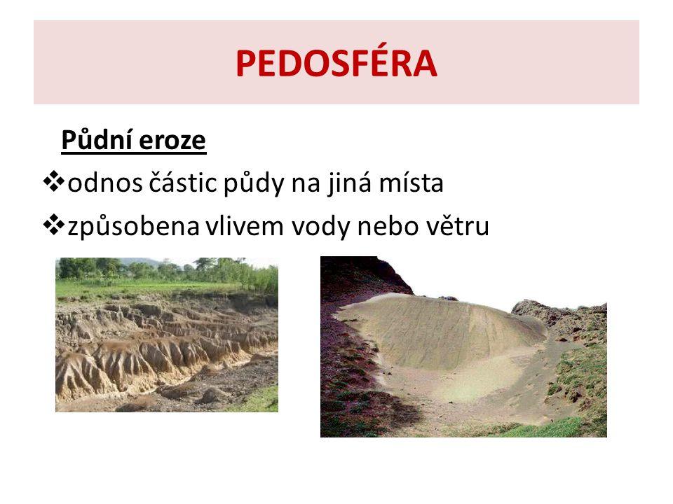 PEDOSFÉRA Půdní eroze odnos částic půdy na jiná místa