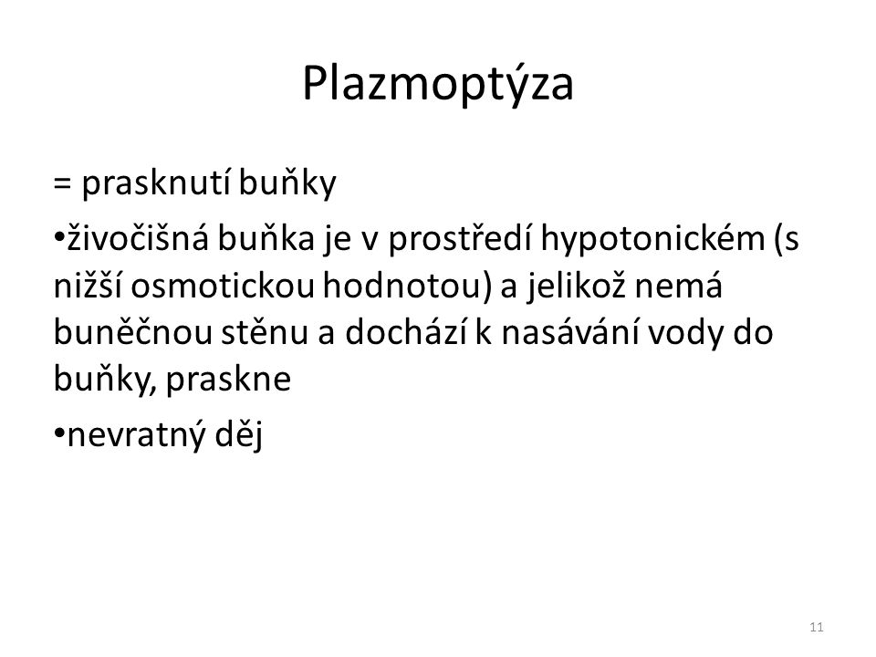 Plazmoptýza = prasknutí buňky