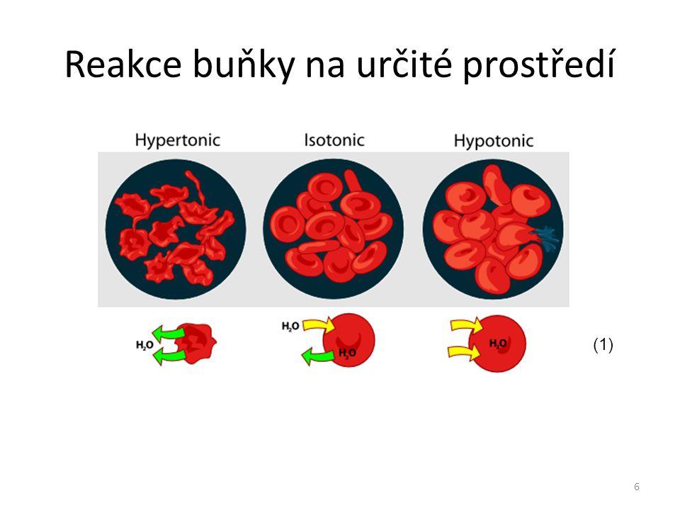 Reakce buňky na určité prostředí