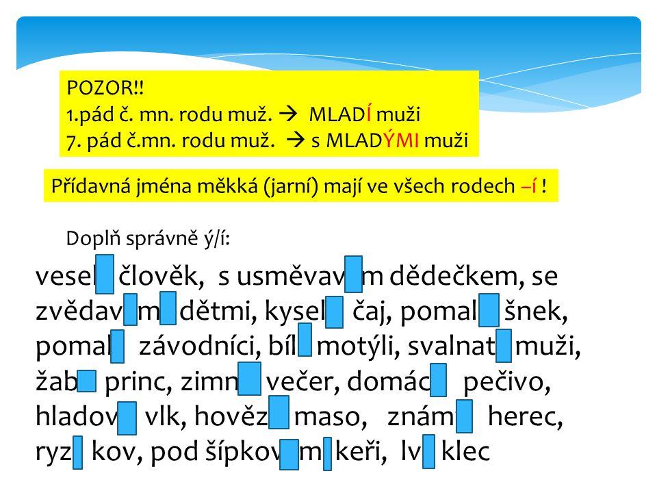 POZOR!! 1.pád č. mn. rodu muž.  MLADÍ muži. 7. pád č.mn. rodu muž.  s MLADÝMI muži. Přídavná jména měkká (jarní) mají ve všech rodech –í !