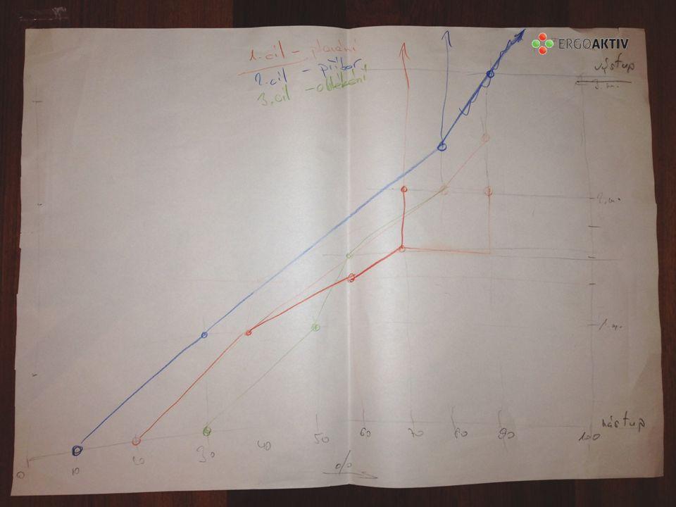 Individuální cíle zobrazené formou grafu…