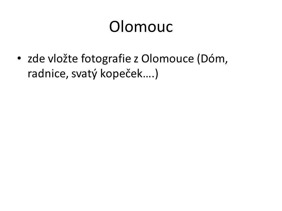 Olomouc zde vložte fotografie z Olomouce (Dóm, radnice, svatý kopeček….)