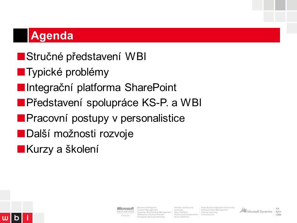 Agenda Stručné představení WBI Typické problémy