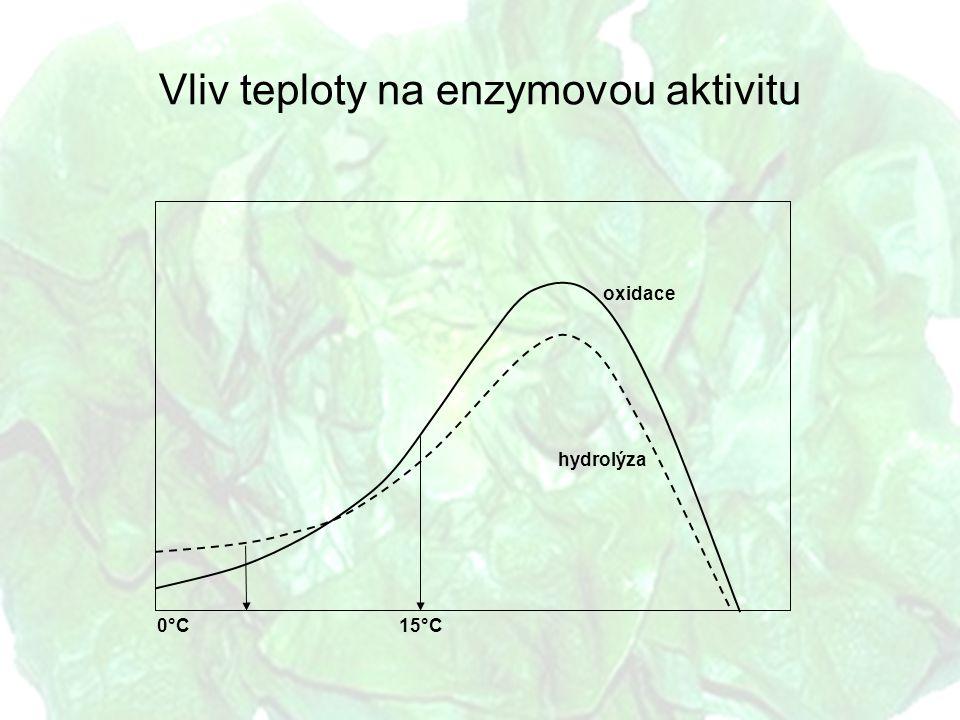 Vliv teploty na enzymovou aktivitu