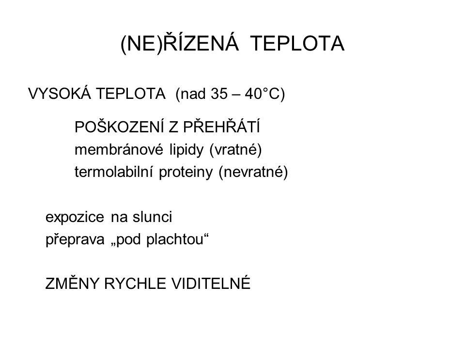 (NE)ŘÍZENÁ TEPLOTA VYSOKÁ TEPLOTA (nad 35 – 40°C) POŠKOZENÍ Z PŘEHŘÁTÍ