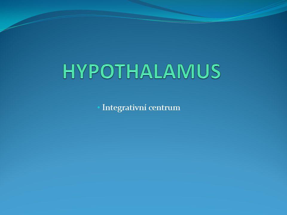 HYPOTHALAMUS Integrativní centrum