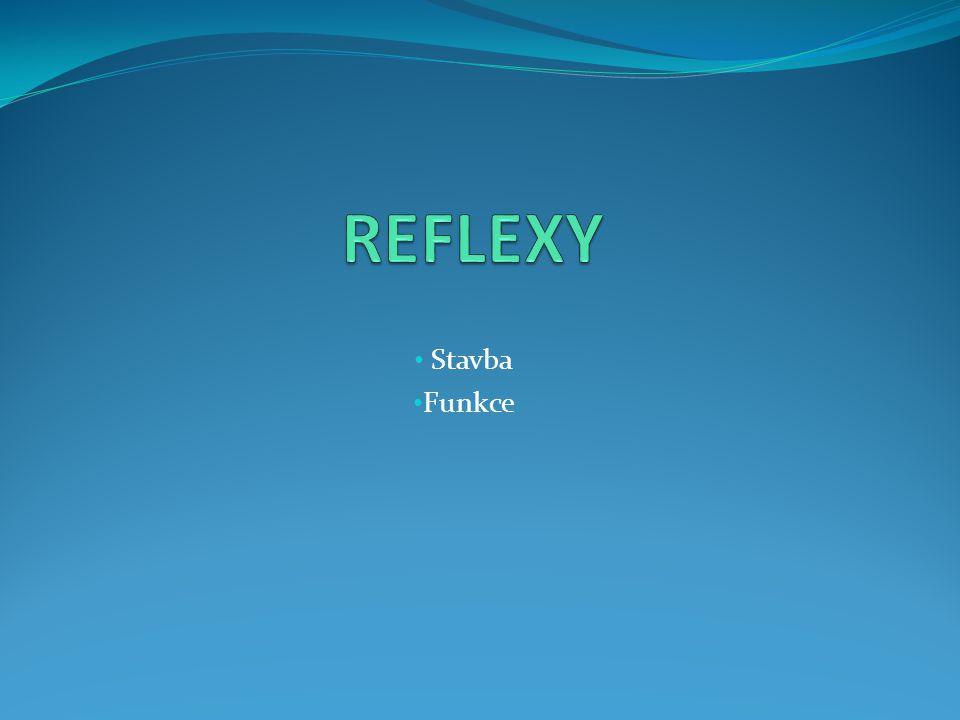 REFLEXY Stavba Funkce
