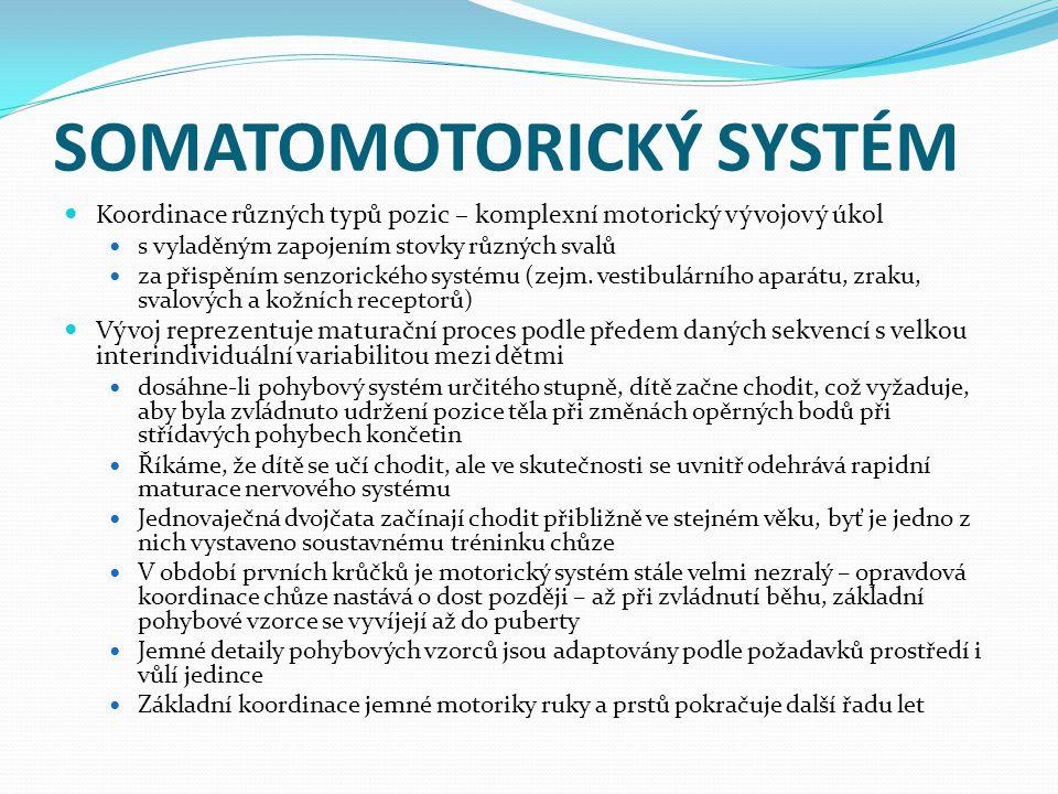 SOMATOMOTORICKÝ SYSTÉM