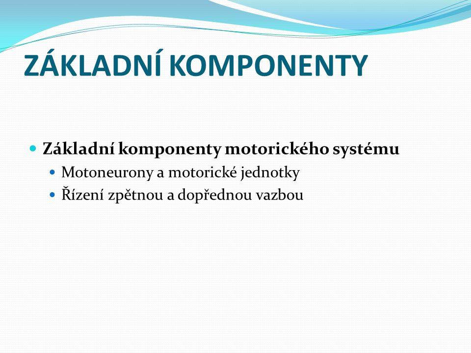 ZÁKLADNÍ KOMPONENTY Základní komponenty motorického systému