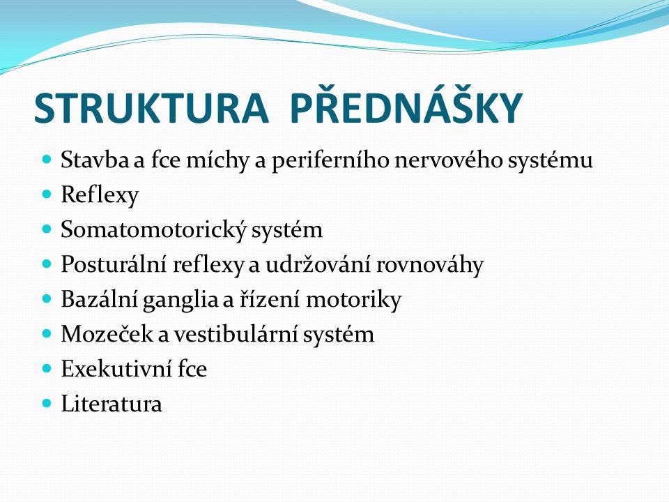 STRUKTURA PŘEDNÁŠKY Stavba a fce míchy a periferního nervového systému