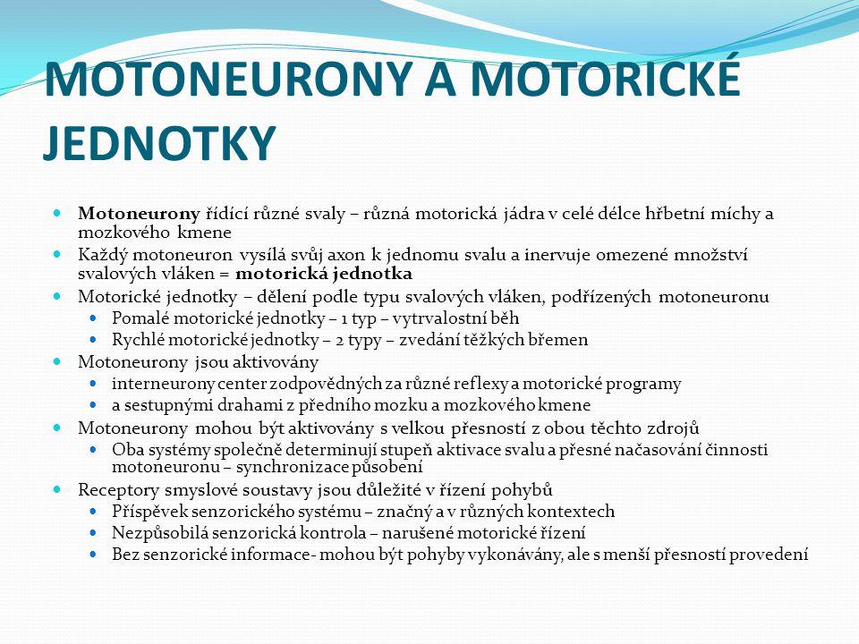 MOTONEURONY A MOTORICKÉ JEDNOTKY