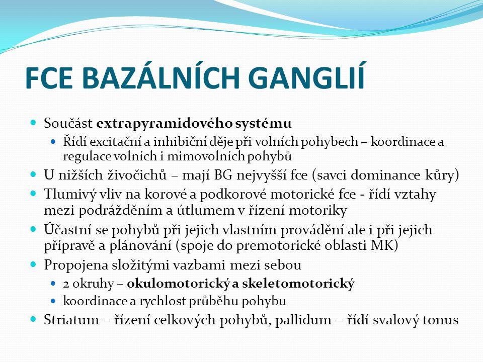FCE BAZÁLNÍCH GANGLIÍ Součást extrapyramidového systému