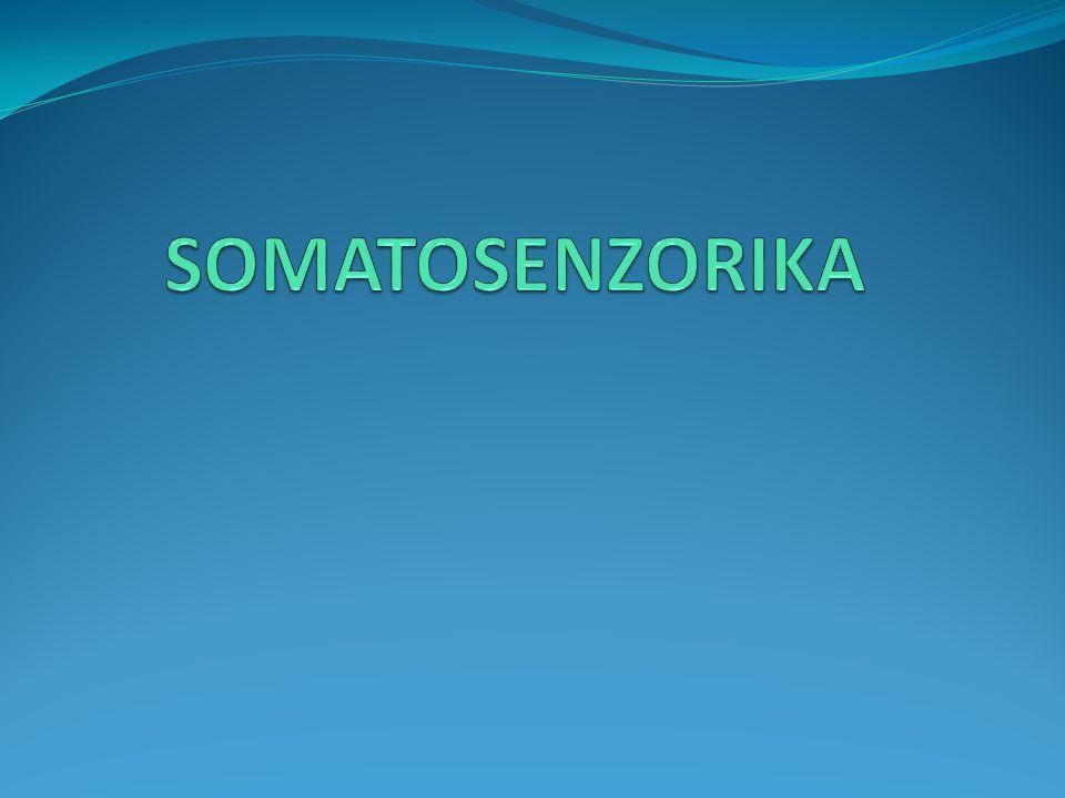SOMATOSENZORIKA