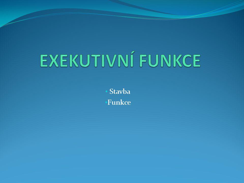 EXEKUTIVNÍ FUNKCE Stavba Funkce