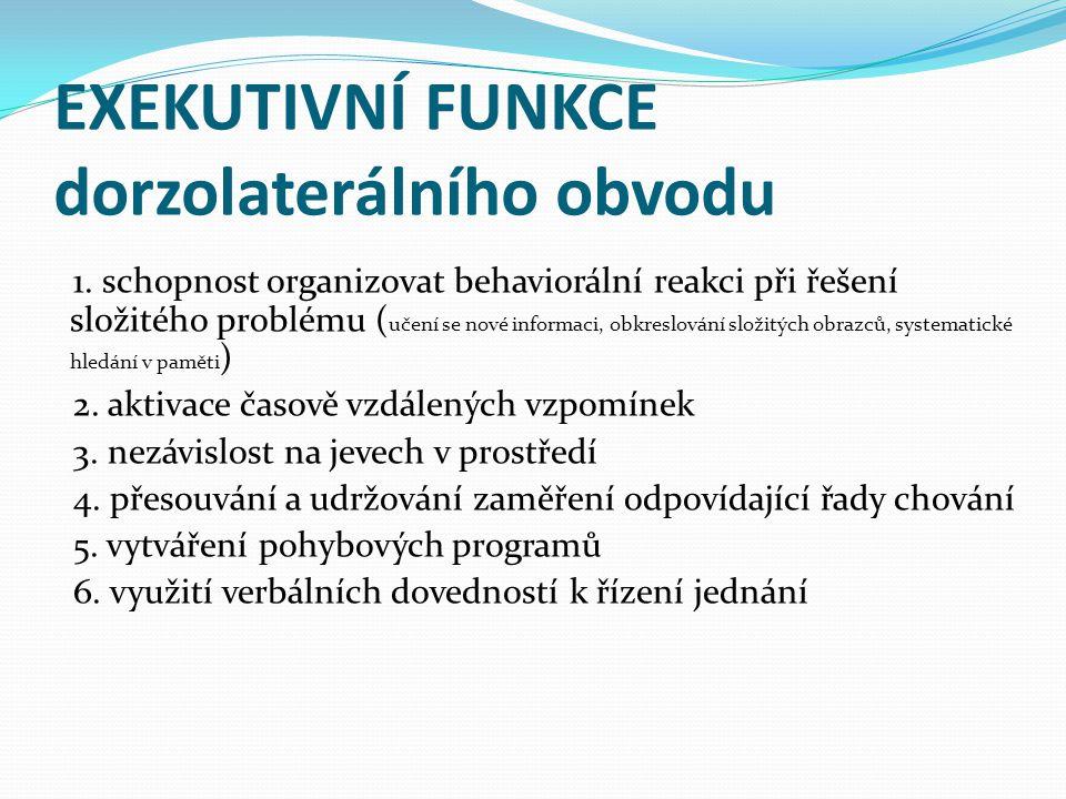 EXEKUTIVNÍ FUNKCE dorzolaterálního obvodu