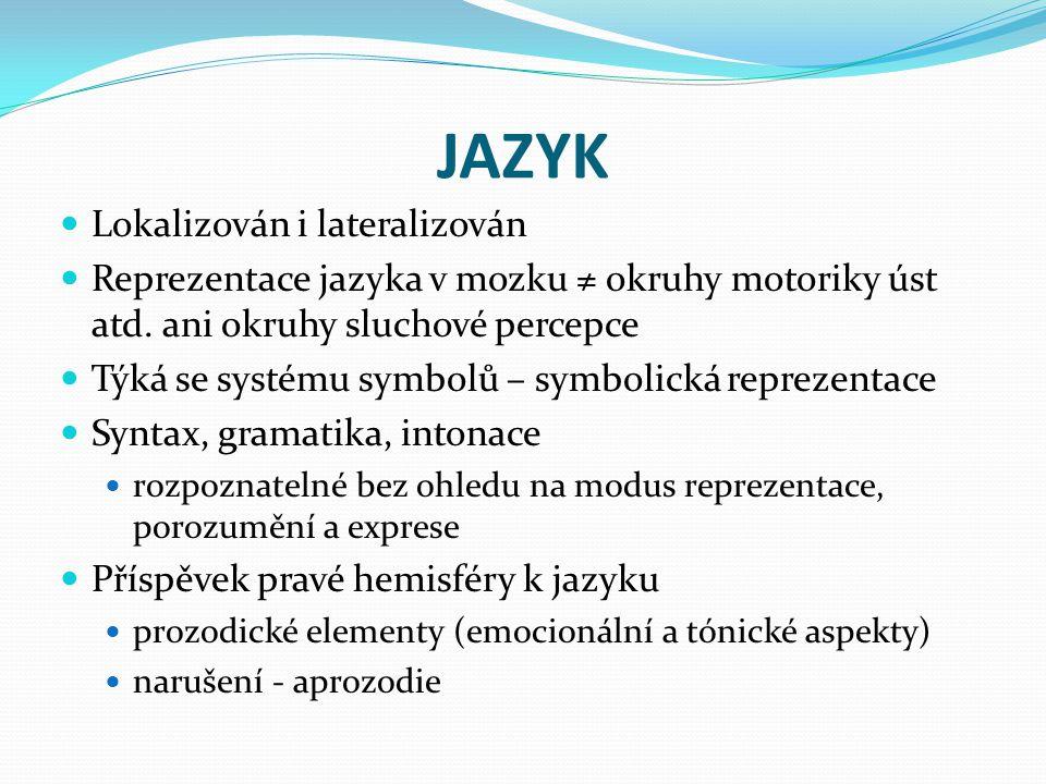 JAZYK Lokalizován i lateralizován