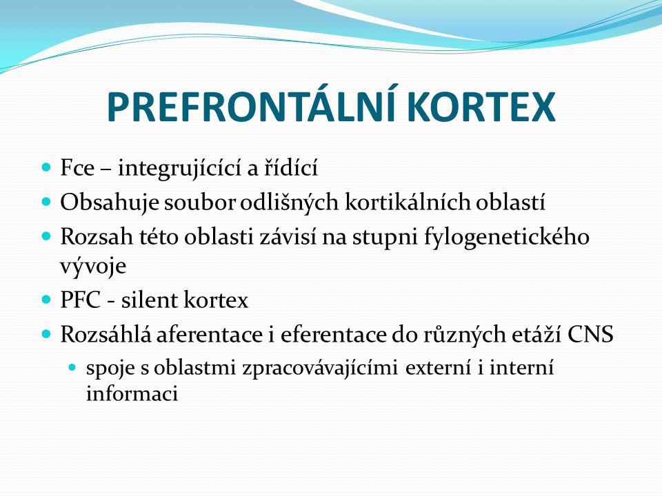 PREFRONTÁLNÍ KORTEX Fce – integrujícící a řídící
