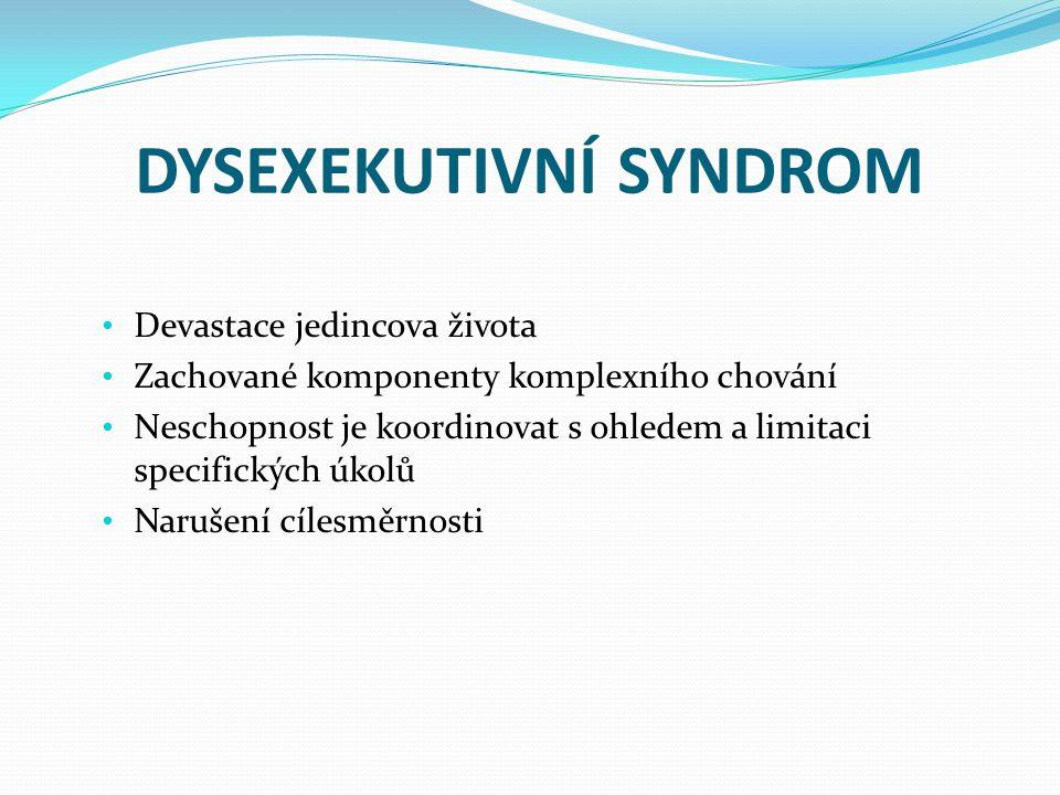 DYSEXEKUTIVNÍ SYNDROM