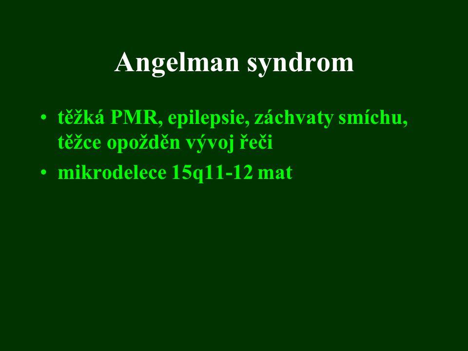Angelman syndrom těžká PMR, epilepsie, záchvaty smíchu, těžce opožděn vývoj řeči.