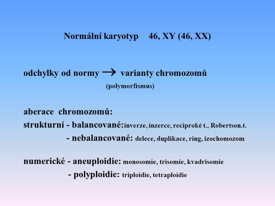 Normální karyotyp 46, XY (46, XX)