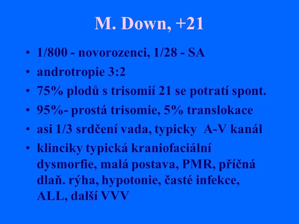 M. Down, +21 1/800 - novorozenci, 1/28 - SA androtropie 3:2