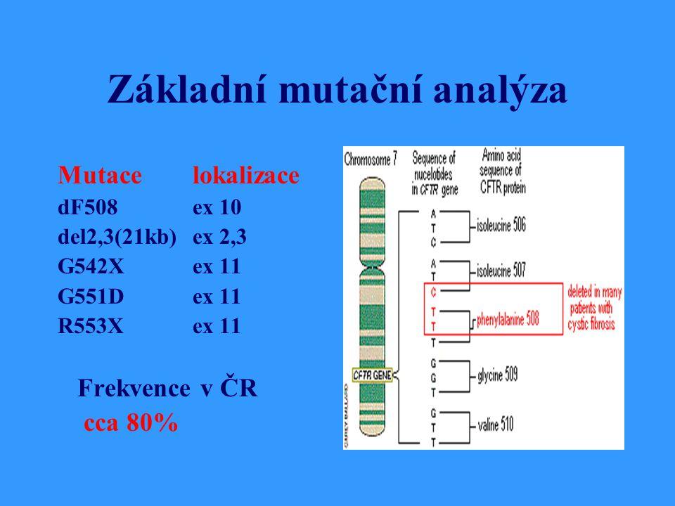 Základní mutační analýza