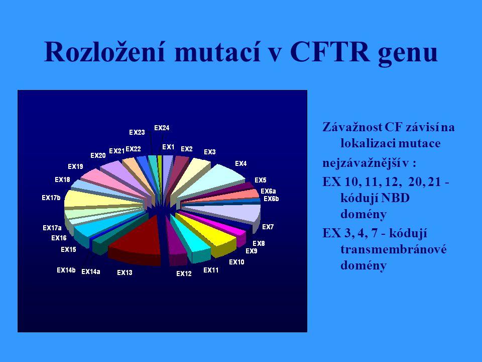 Rozložení mutací v CFTR genu