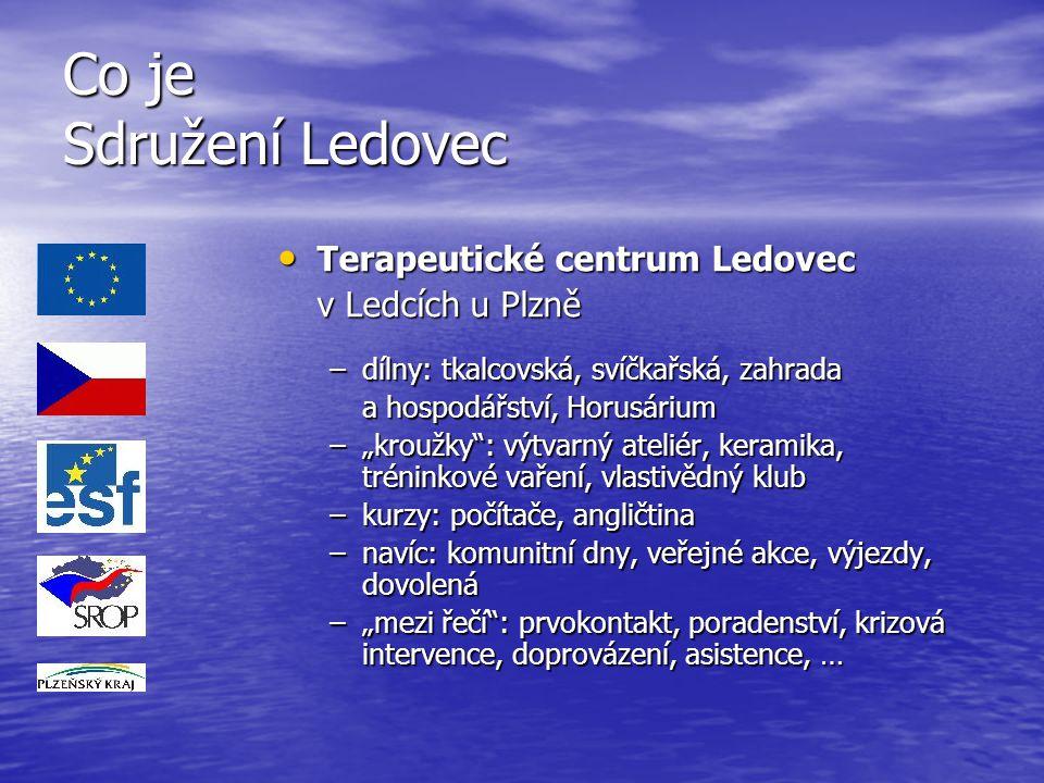 Co je Sdružení Ledovec Terapeutické centrum Ledovec v Ledcích u Plzně