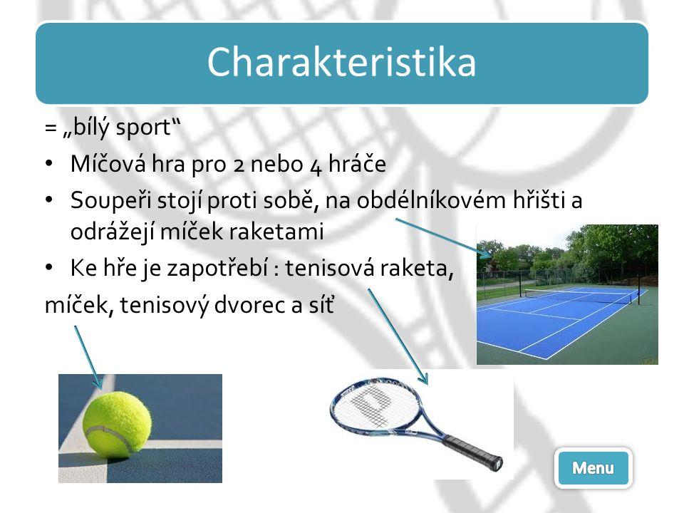 """Charakteristika = """"bílý sport Míčová hra pro 2 nebo 4 hráče"""