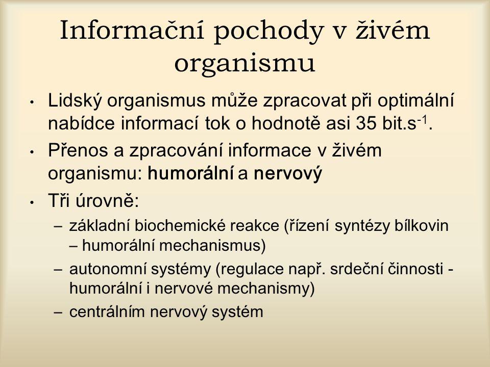 Informační pochody v živém organismu