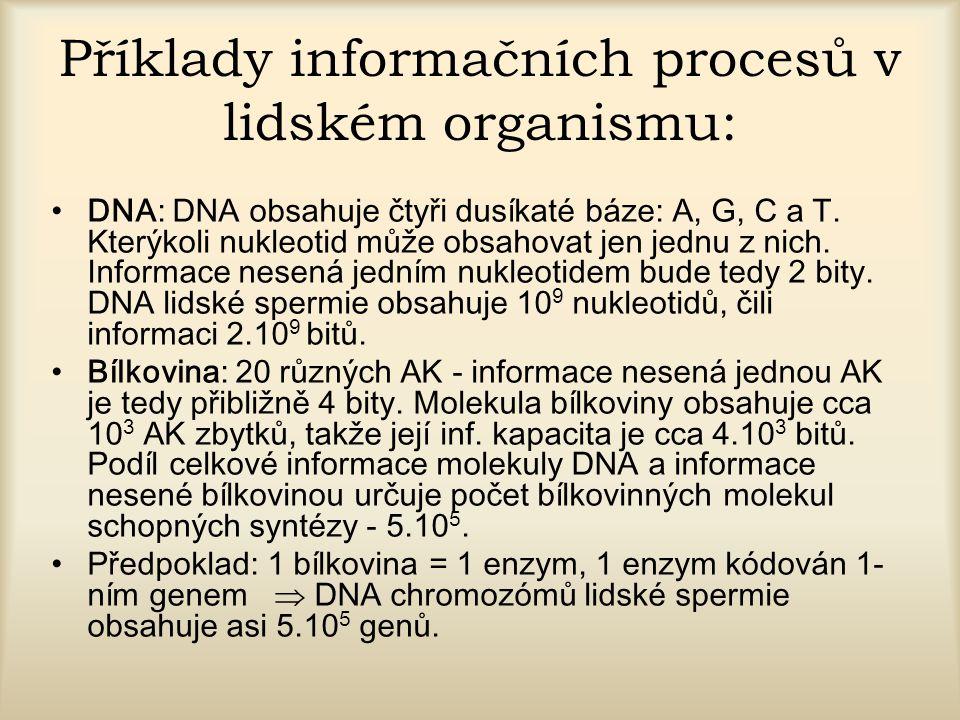 Příklady informačních procesů v lidském organismu: