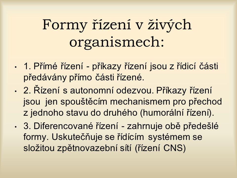 Formy řízení v živých organismech: