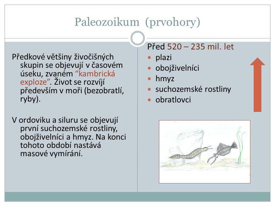 Paleozoikum (prvohory)