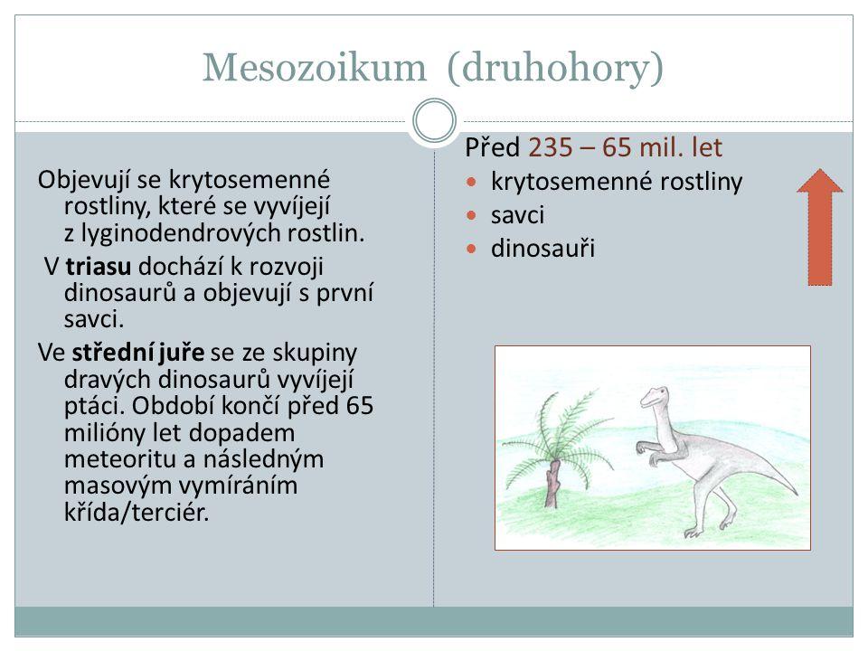 Mesozoikum (druhohory)
