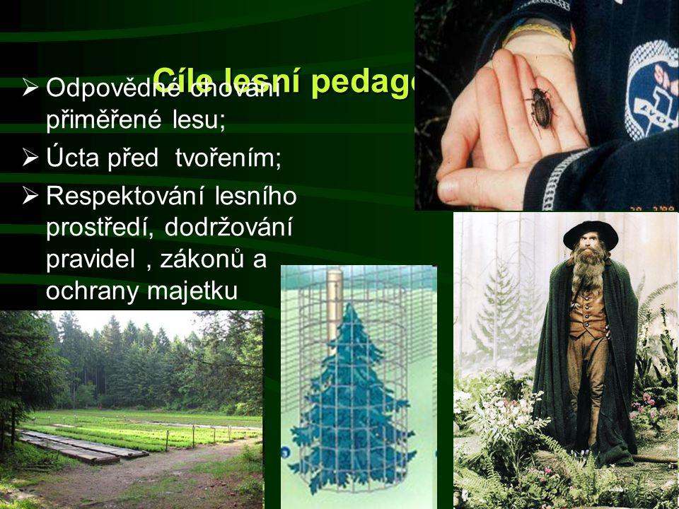 Cíle lesní pedagogiky II