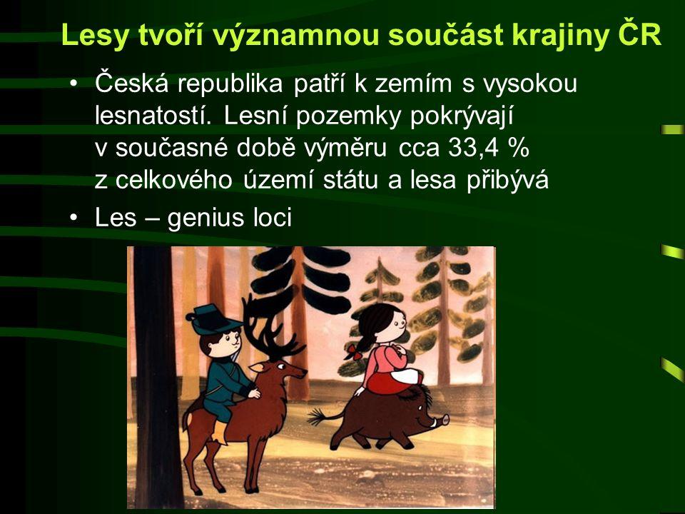 Lesy tvoří významnou součást krajiny ČR