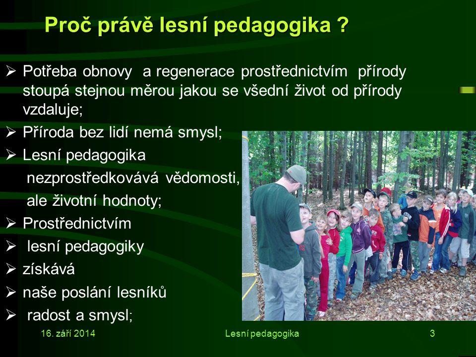 Proč právě lesní pedagogika