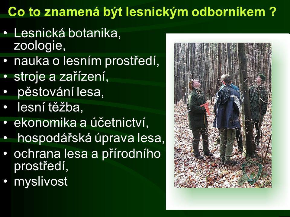 Co to znamená být lesnickým odborníkem