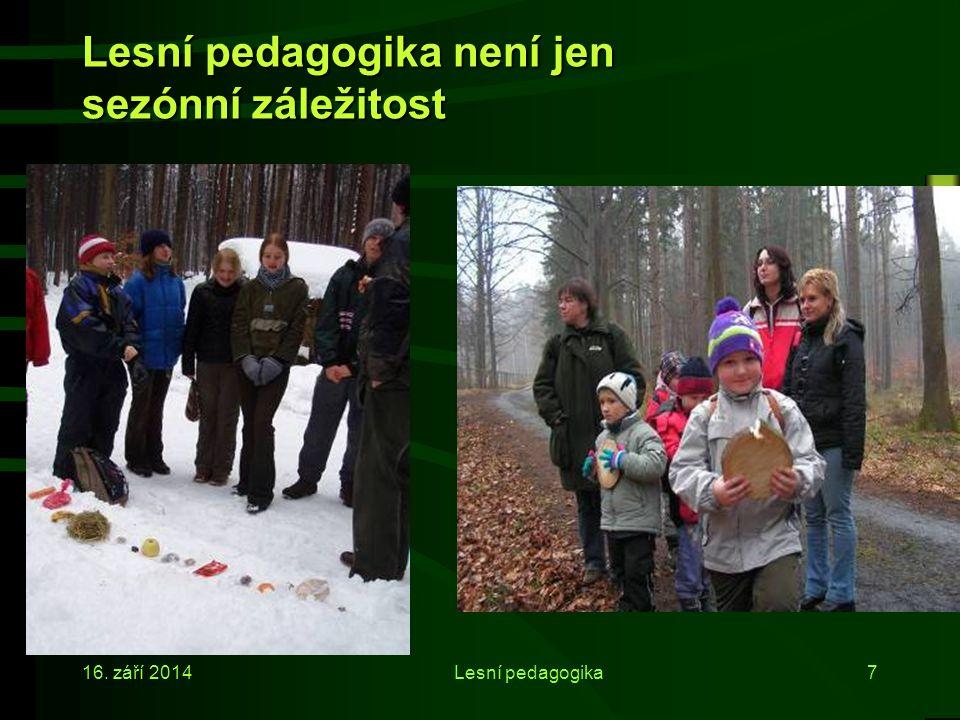 Lesní pedagogika není jen sezónní záležitost