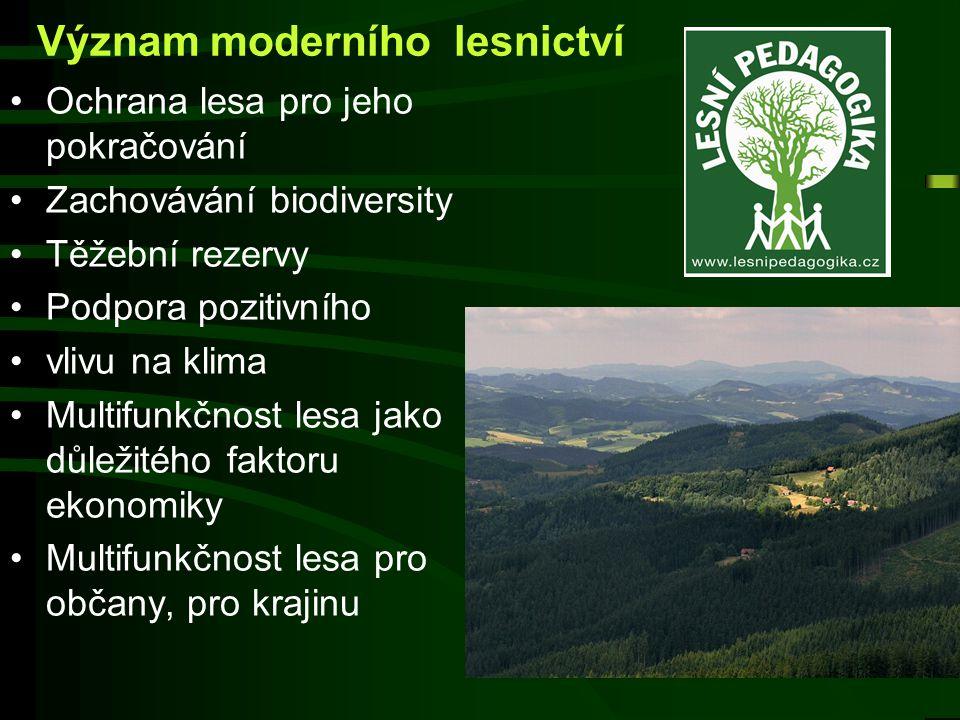 Význam moderního lesnictví