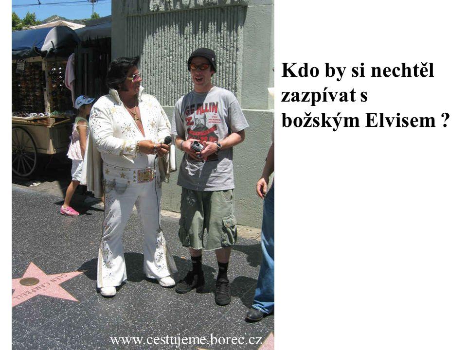 Kdo by si nechtěl zazpívat s božským Elvisem