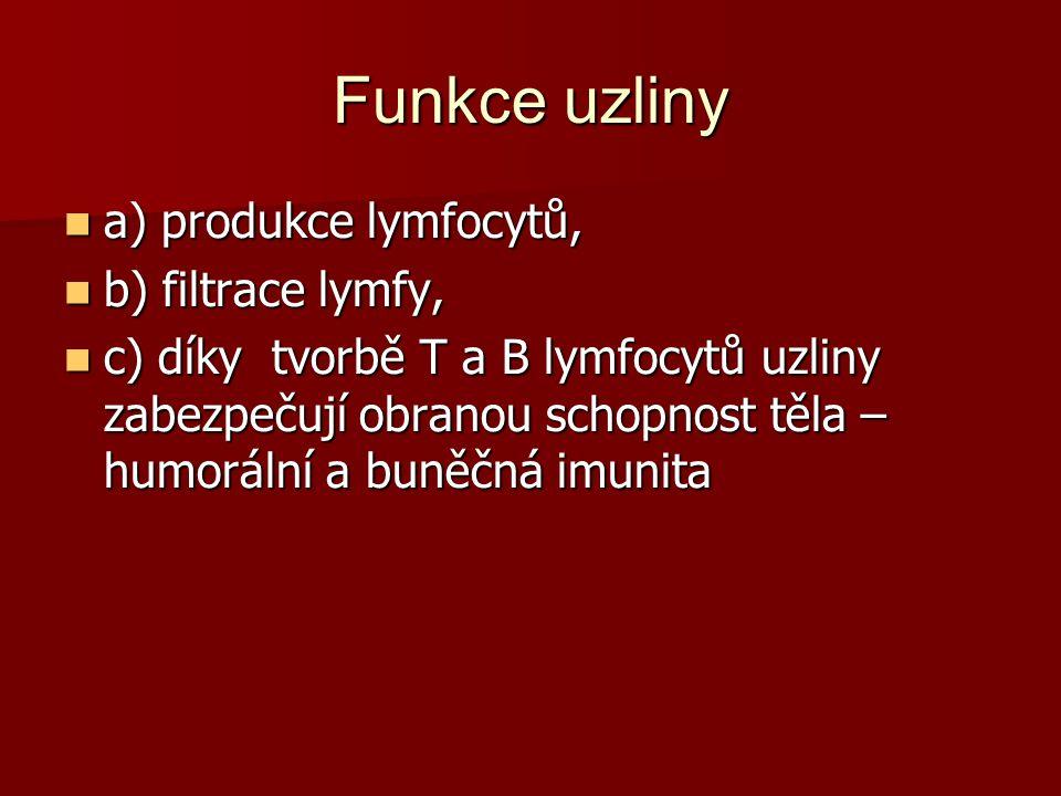 Funkce uzliny a) produkce lymfocytů, b) filtrace lymfy,