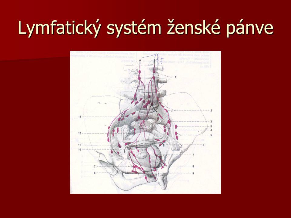 Lymfatický systém ženské pánve
