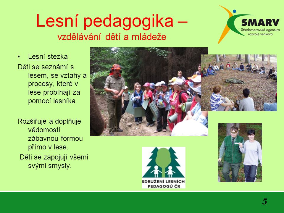 Lesní pedagogika – vzdělávání dětí a mládeže