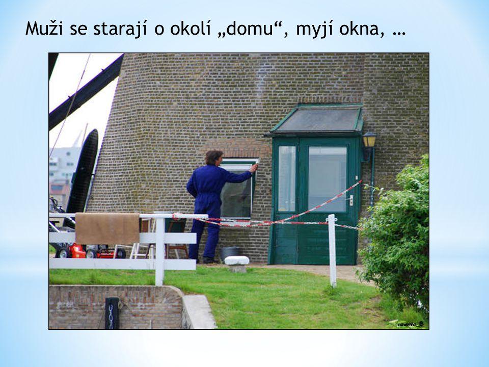 """Muži se starají o okolí """"domu , myjí okna, …"""